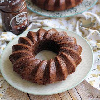Cake moelleux pâte tartiner