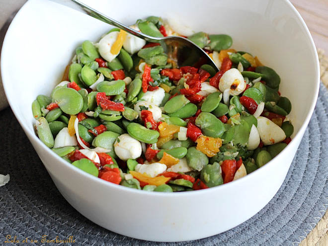 fèves recette,fèves fraiches,salade fève poivrons grillés,salade estivale,salade de fèves