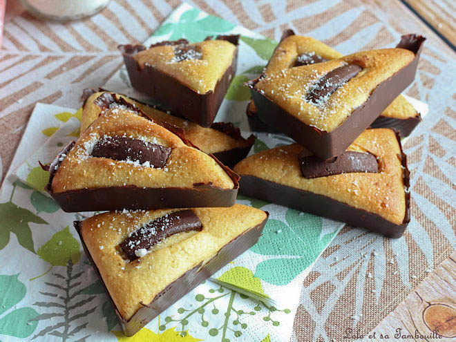 gâteaux au yaourt noix de coco,gâteau yaourt coco chocolat,gâteaux yaourt coco